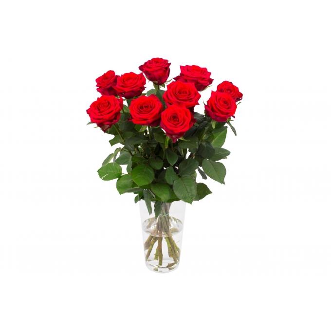 Boeket van 10 Red Naomi rozen