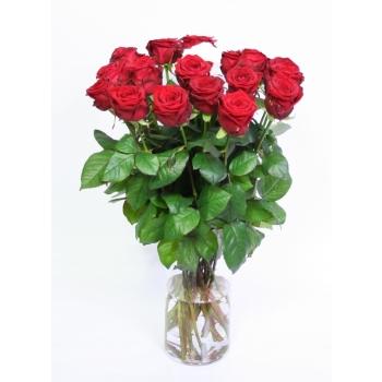 Rode Rozen boeket met 1 witte Roos van grootbloemige Rozen