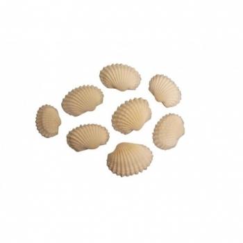 Schelpen white Chippi small en Nassa