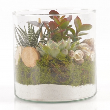 Cilinder Glas met vetplanjes