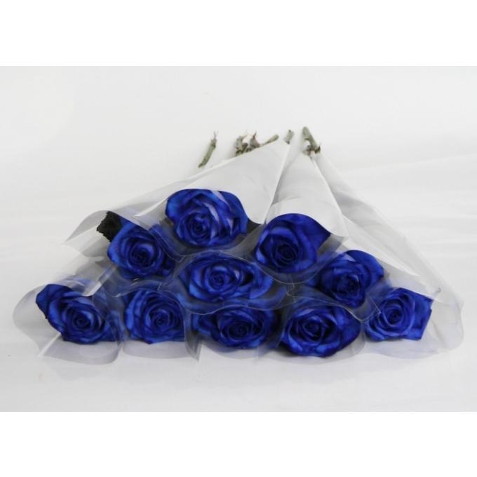 Blauwe Rozen van 70 cm ingepakt in een frosted wit hoesje