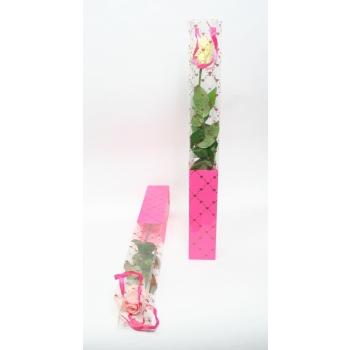 1 Roos in een luxe hartjes hoes van 60 cm