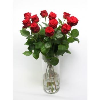Een dozijn Rode grootbloemige rozen Rozen