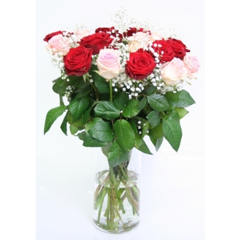Rozen boeket van 10 roze Rozen en 10 rode Rozen met Gyps