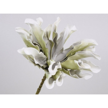 Foam bloem Dracena wit grijs Ø 24 cm