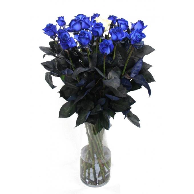 Blauwe Rozen boeket van lange blauwe Rozen met 1 witte Roos