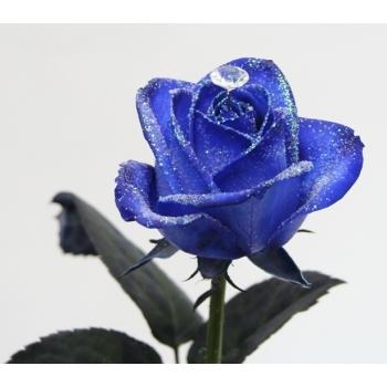 Boeket van blauwe geglitterde Rozen met een diamantje