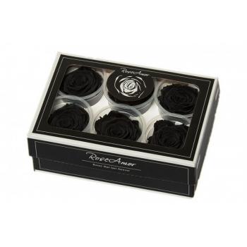 Geconserveerde zwarte Rozen in een cadeaubox