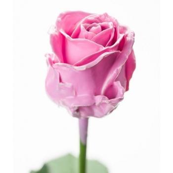 Boeket van grootbloemige roze wax Rozen