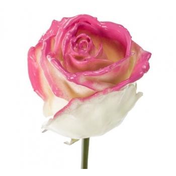 Boeket van grootbloemige wax Rozen wit met blos roze