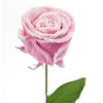 Boeket van grootbloemige wax Rozen roze met sneeuw