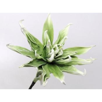 Foam bloem groen wit Ø 35 cm