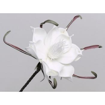 Foam bloem wit Ø 20 cm