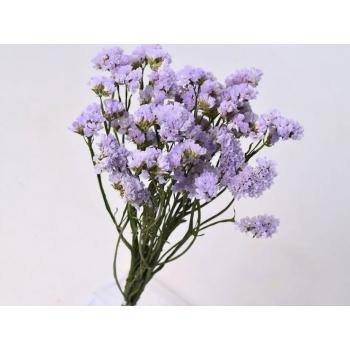 Gedroogde Statice lavendel