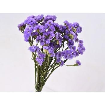 Gedroogde Statice violet