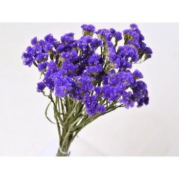 Gedroogde Statice donker violet
