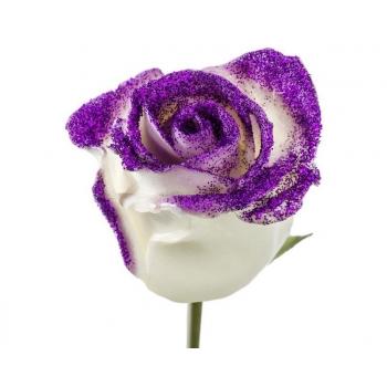 Boeket van grootbloemige wax Rozen wit met paarse glitters