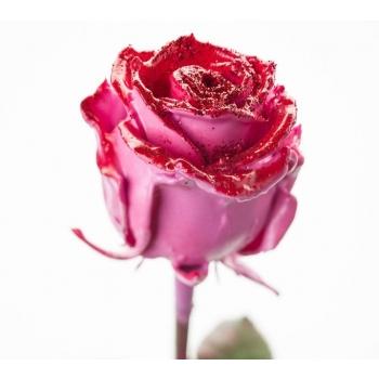Boeket van grootbloemige wax Rozen roze met rode glitters