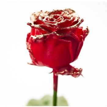 Boeket van grootbloemige wax Rozen rood met gouden blos