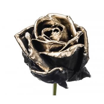 Boeket van grootbloemige wax Rozen zwart met gouden blos