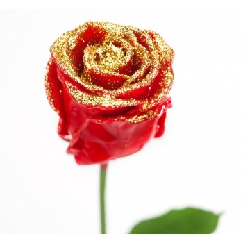 Boeket van grootbloemige wax Rozen rood met gouden glitters