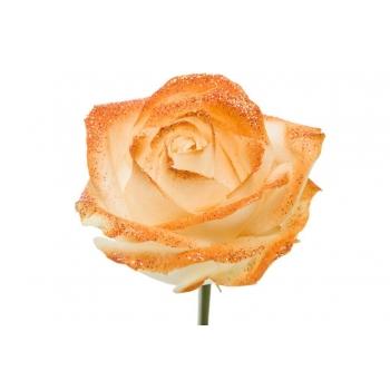 Boeket van witte grootbloemige Rozen met oranje glitters