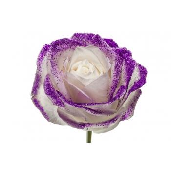 Boeket van witte grootbloemige Rozen met paarse glitters