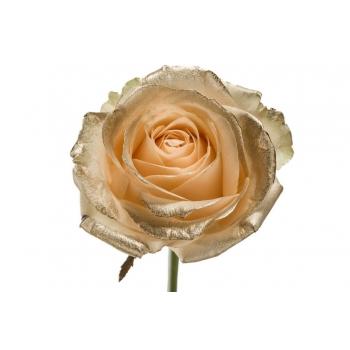Boeket van peach grootbloemige Rozen met gouden blos