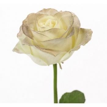 Boeket van witte grootbloemige Rozen met gouden blos