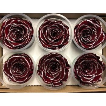 Geconserveerde rode Rozen met glitters in een cadeaubox