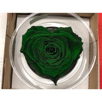 Geconserveerd groene Rozen hart in een cadeaubox