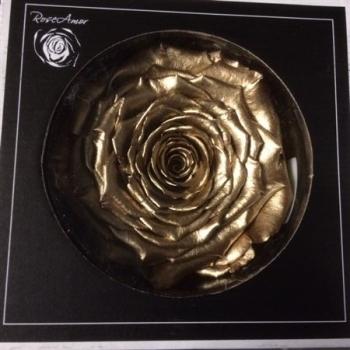 Geconserveerde goudkleurige Roos in een cadeaubox