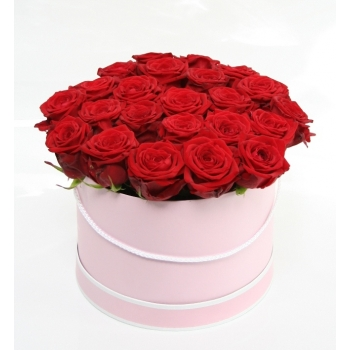 Rode Rozen in een licht roze doos