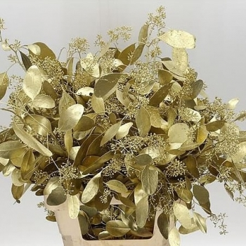 Eucalyptus Populus goud geverfd per bos