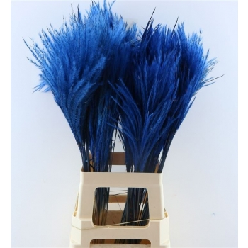 Fluffy Reed gras pluimen donker blauw