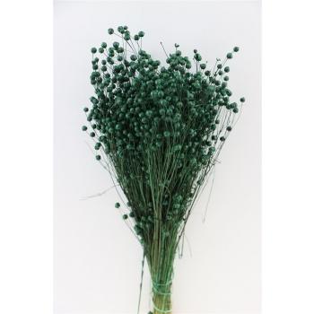 Gedroogde Lino vlas groen 100 gram