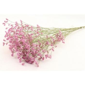 Gedroogde Limonium Diamond roze