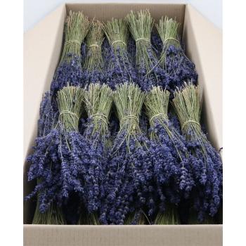 Gedroogde bos Lavendel Dark Blue van 150 gram