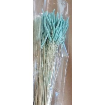 Gedroogde Phleum Pratensis licht blauw 150 gram