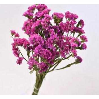 Gedroogde Statice roze