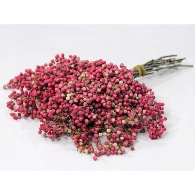 Pepperberries roze 25-35 cm