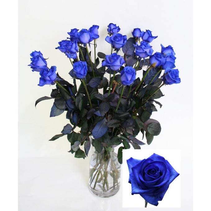 Blauwe Rozen boeket van lange middel grootbloemige Rozen