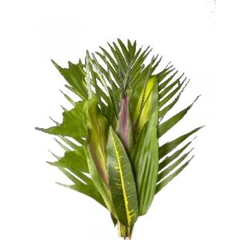 Tropische groenmix