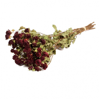 Gedroogde donker rode tros rozen