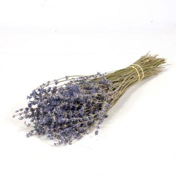 Gedroogde Lavendel naturel blauw